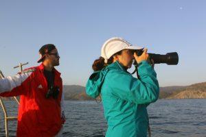 2.Colaboradores dofins tramuntana fotoidentificación(3)